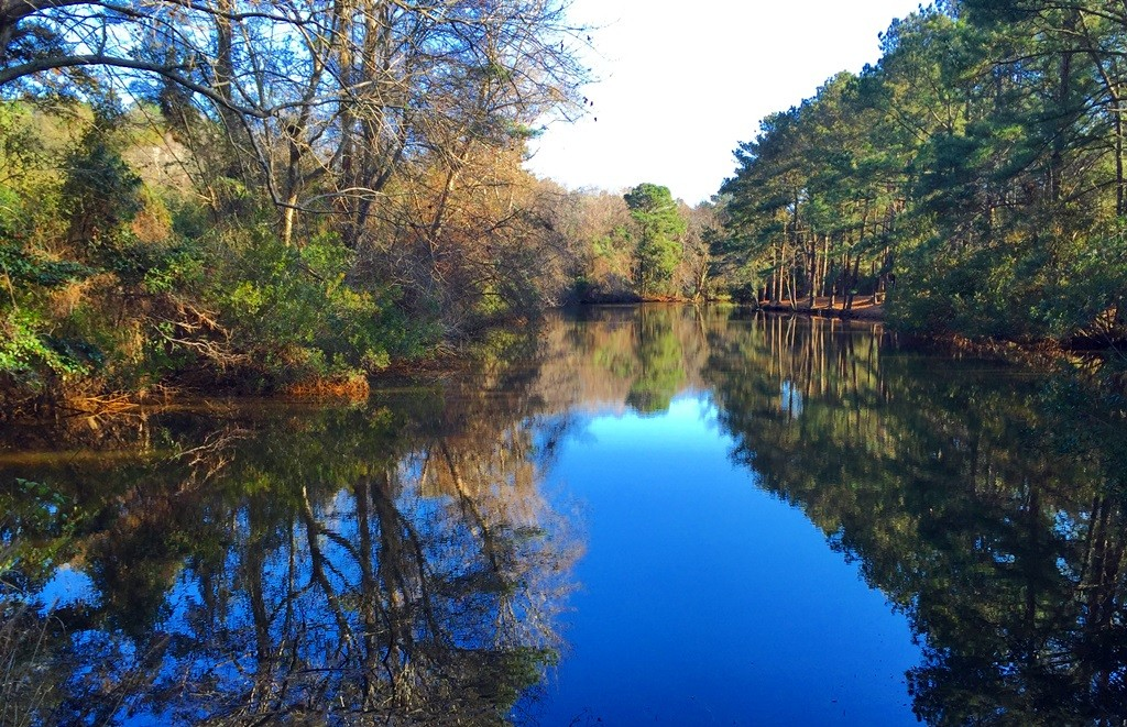Leeward Inn_Trinitie Park Pond_Southern Shores_OBX_Outer Banks